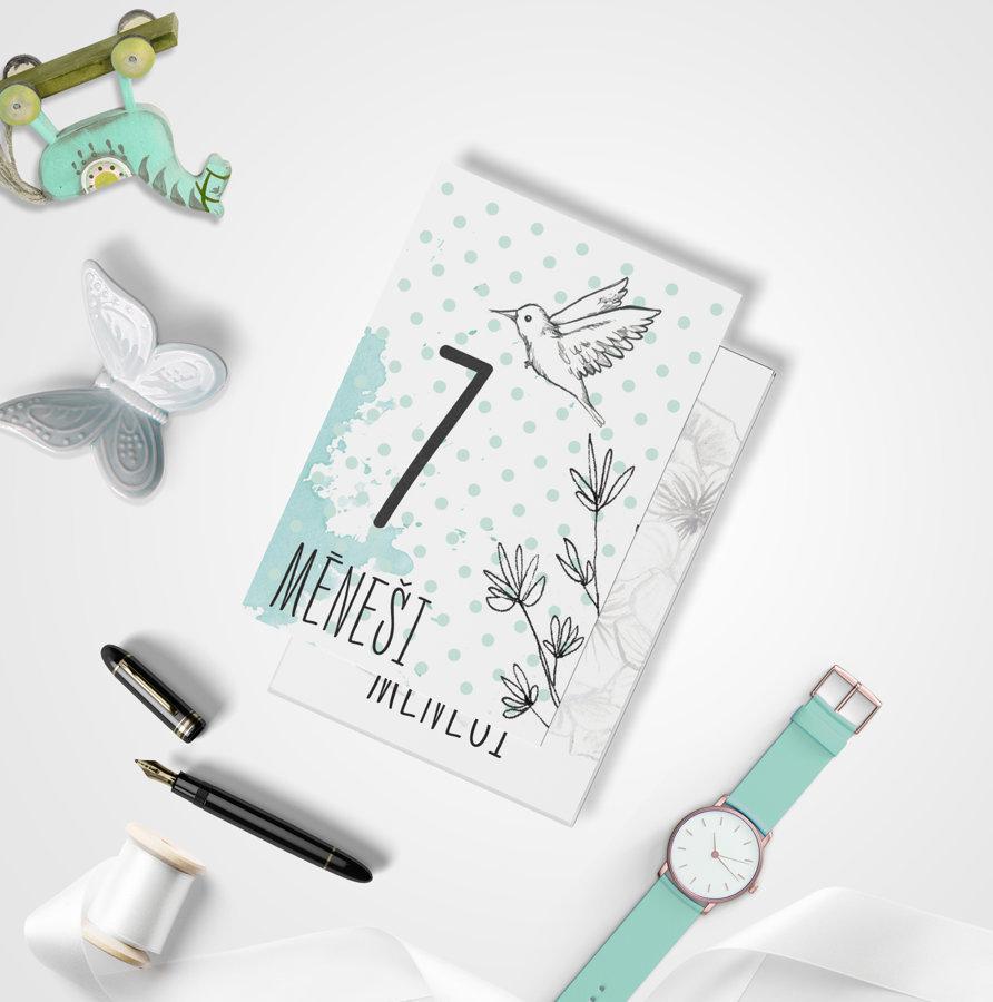 Mēneša kartiņu komplekts Pastel Mint, BeLoved